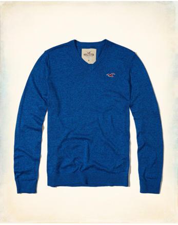 hol V-Neck Icon Sweater