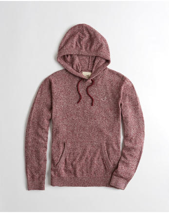 hol Hooded Icon Sweater