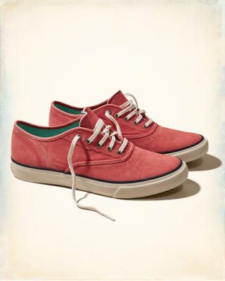 Hollister Lace Up Sneaker